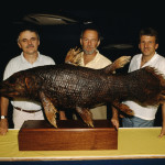 Hans Fricke, Mike and Jürgen Schauer with the first coelacanth specimen in the East London Museum in 1987.
